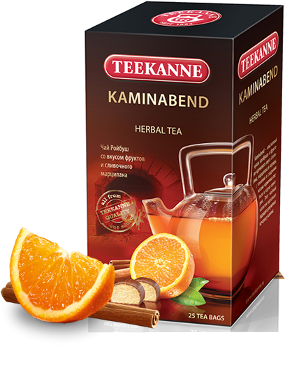 kaminabend_new
